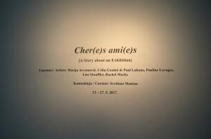 21. Cher(e)s ami(e)s