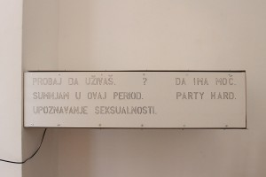 Očekivanja - Expectations, instalacija, autori Jelena Nikolić, Kristina Grebenar i Filip Mikić, foto Miša Mladenović  (1)